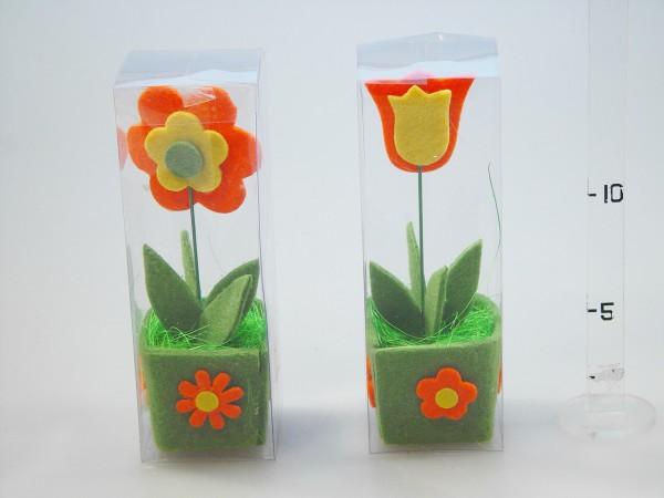 Kvety filc 2druhy