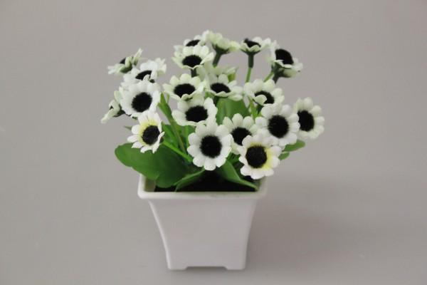 Květy v květináči mix 13cm