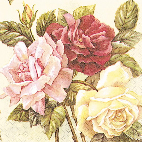 Ubrousky 33/30/20 růže
