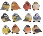 Ptáček mix